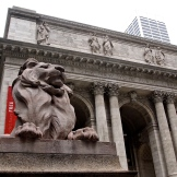 The lions and the NYC public library 8.31.15