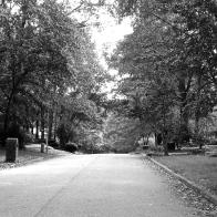 Enjoying nice walks in the neighborhood 9.15
