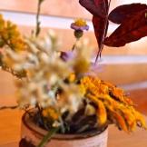 Wildflowers 9.15