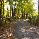 Trails 9.15