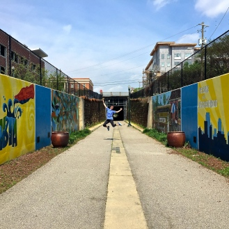 Lady Street/Greenway Murals (900 Lady Street)